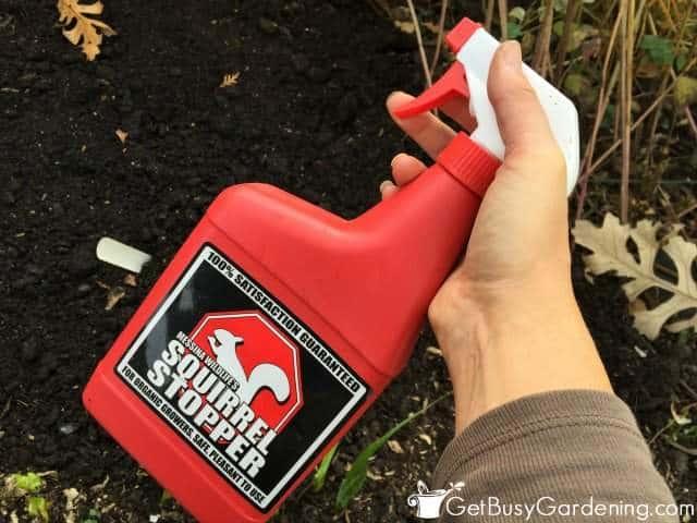 Squirrel Stopper Organic Pest Control