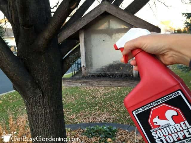 Squirrel Stopper Spray On Bird seed