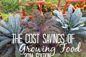 The Cost Savings Of Growing Food - 2014 Edition