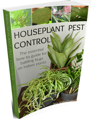 Houseplant pests control ebook