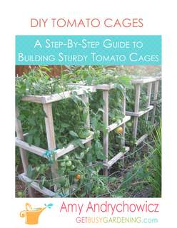 Sturdy Tomato Cages