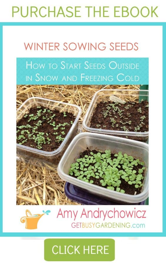 Winter Sowing eBook