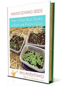Winter Houseplant Care Book