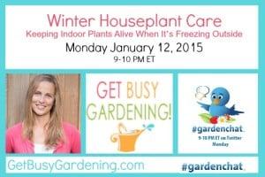 GardenChat Winter Houseplant Care