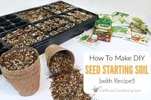 How To Make Your Own DIY Seed Starting Mix (With Recipe!)