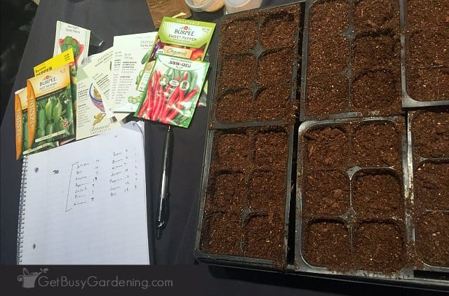 How to create your own seed planting schedule