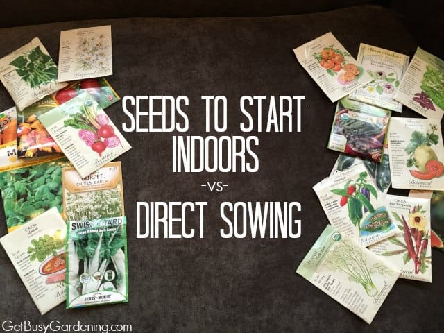 Seeds To Start Indoors -vs- Direct Sowing