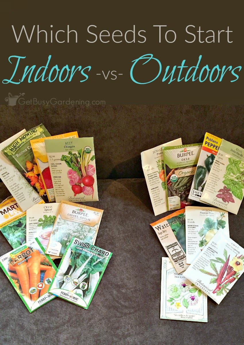 Some seeds will grow better when sown outside; others are easier to grow indoors. Here's a list of seeds to start indoors -vs- in the garden.