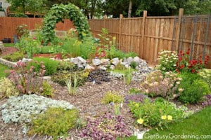 Vegetable And Rain Gardens | GetBusyGardening.com
