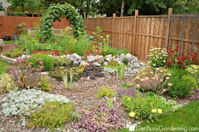 2015 Garden Focus
