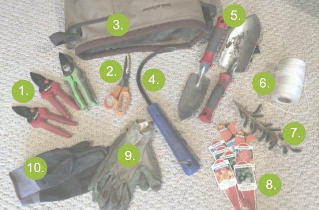 Contents Of My Gardening Bag Revealed