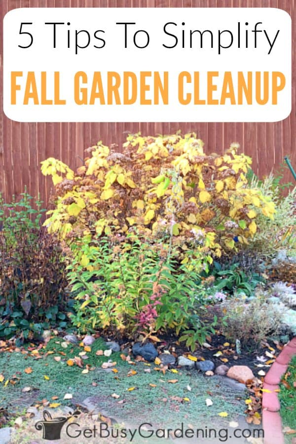 Fall is a stressful time for gardeners, especially for beginners. With all the DIY chores and maintenance, getting everything done before the snow flies can be a ton of work! That's why I put together this list of fall care tips and ideas you can use to speed up and simplify your garden clean up. Make quick work of cleaning flower, vegetable, perennial and annual beds in preparation for winter.