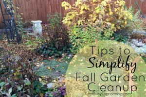 Tips to Simplify Fall Garden Cleanup