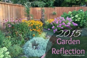 2015 Garden Reflection