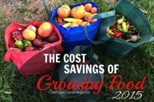 Cost Savings Of Growing Food – 2015