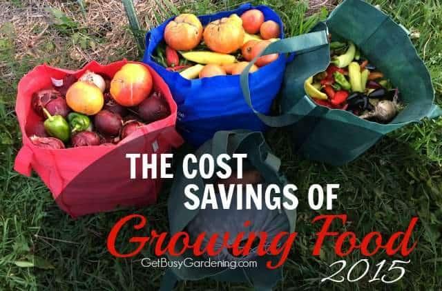 Cost Savings Of Growing Food 2015