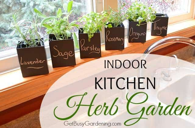 Indoor kitchen herb garden for Kitchen herb garden