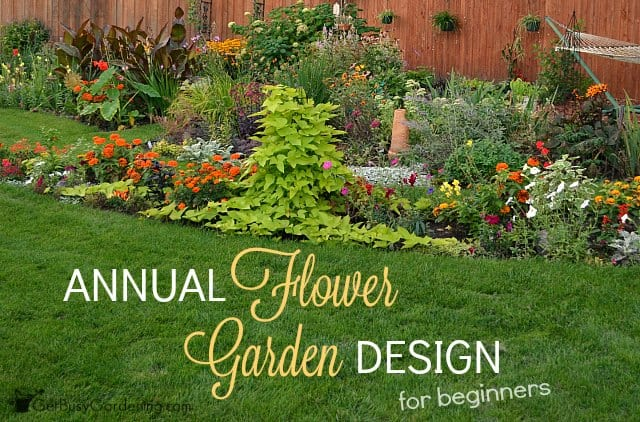 annual flower garden design for beginners