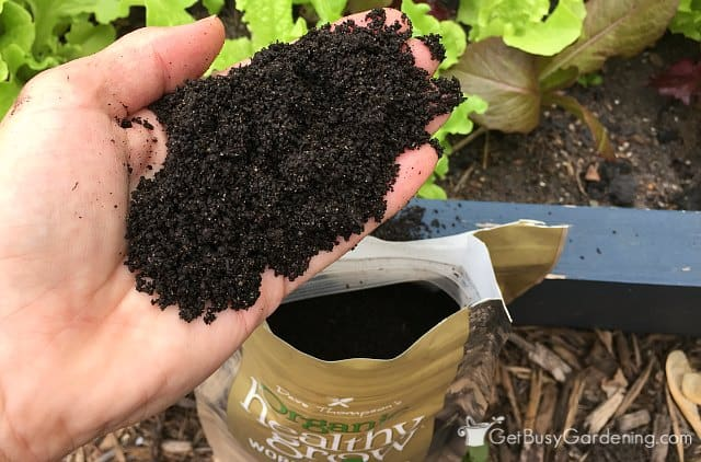 Healthy Grow organic worm castings up close