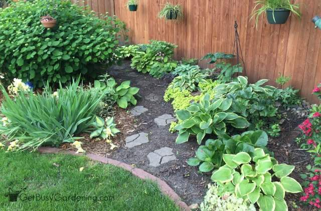 Perennials Made Easy How To Create Amazing Gardens Get Busy Gardening