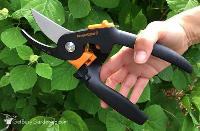 Fiskars pruning shears