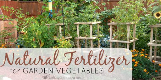 Natural Fertilizer For Garden Vegetables Get Busy Gardening