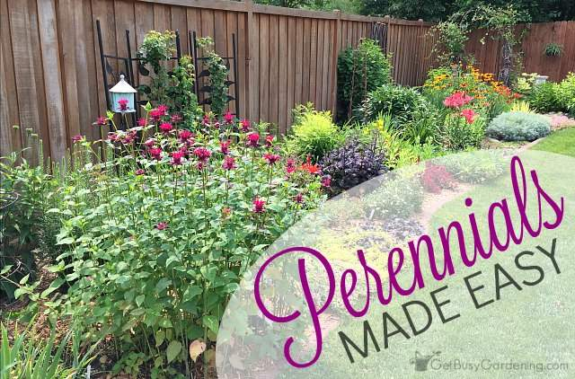 Perennials made easy