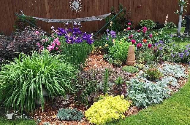 Flower garden bulb and perennial designs for amazing for Spring bulb garden designs