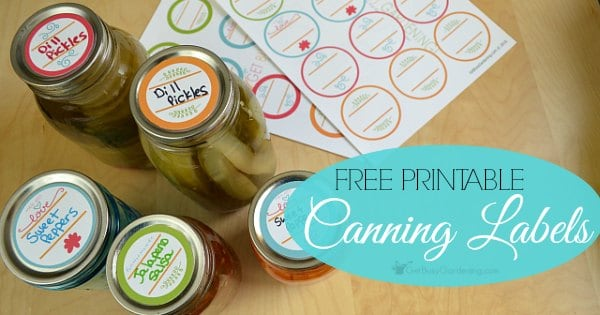 photo about Printable Jar Labels titled Printable Canning Labels: Absolutely free Downloadable Labels For