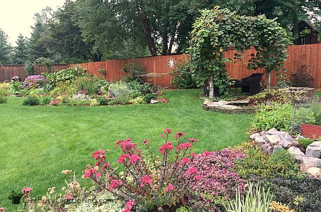 Part of my backyard and gardens