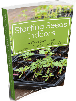 Starting seeds indoors eBook
