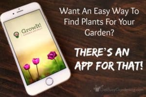 Want An Easy Way To Find Plants For Your Garden? There's An App For That! (+ a $100 Giveaway!)