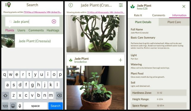 GrowIt! app search and plant information