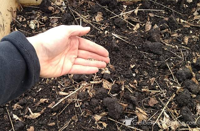 Planting tiny seeds
