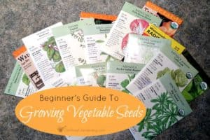 A Beginner's Guide To Growing Vegetables From Seed