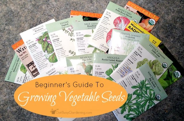 Starting Vegetable Seeds: Beginners Guide To Growing Vegetables From Seed