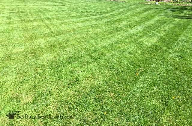 Checkerboard mowing pattern