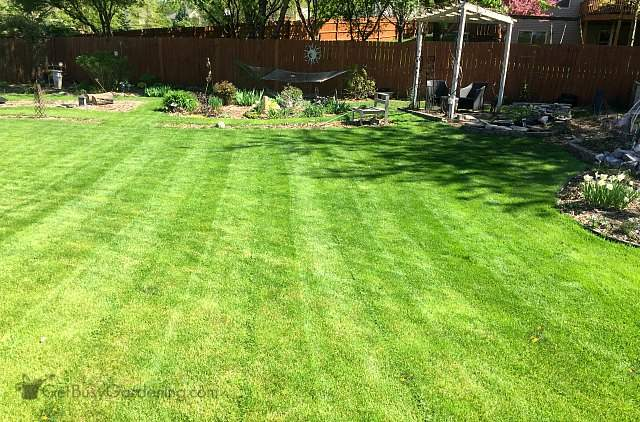 Experiment with different grass cutting techniques