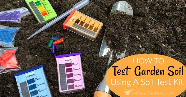 Garden soil testing how to test your soil at home using a for Soil nutrient test kit