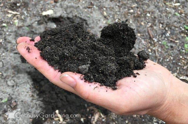 Home garden soil testing is easy