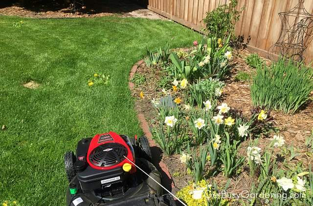 Mow your lawn edges first