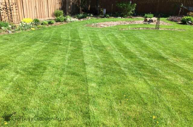 Simple lawn striping patterns