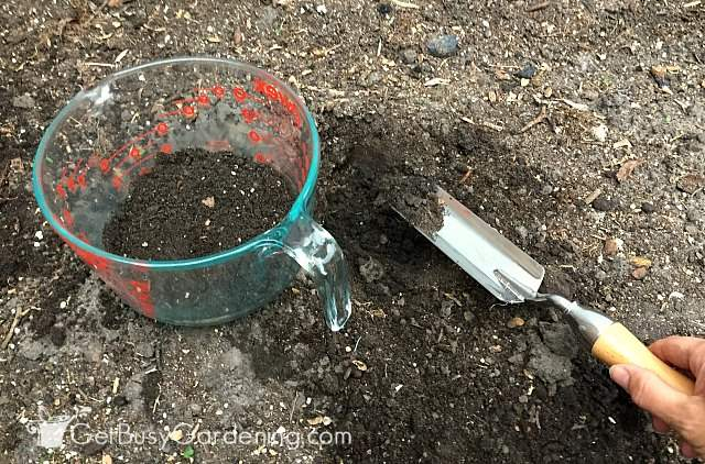 Taking soil sample for home garden soil testing