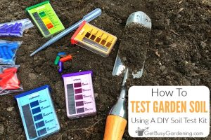 How To Test Your Soil At Home Using A Soil Test Kit