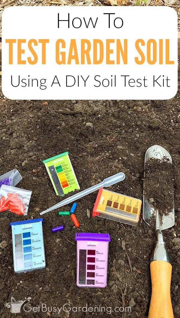 All plants need nutrient rich, fertile soil to grow their best, and produce tons of flowers and vegetables. If they don't get the proper nutrients and pH levels, they won't grow well. You can't tell if your garden soil is healthy just by looking at it. That's why it's important to test the soil. Don't worry, garden soil testing isn't difficult, time consuming or expensive. Learn exactly how to test your soil at home step-by-step using an inexpensive DIY soil test kit.