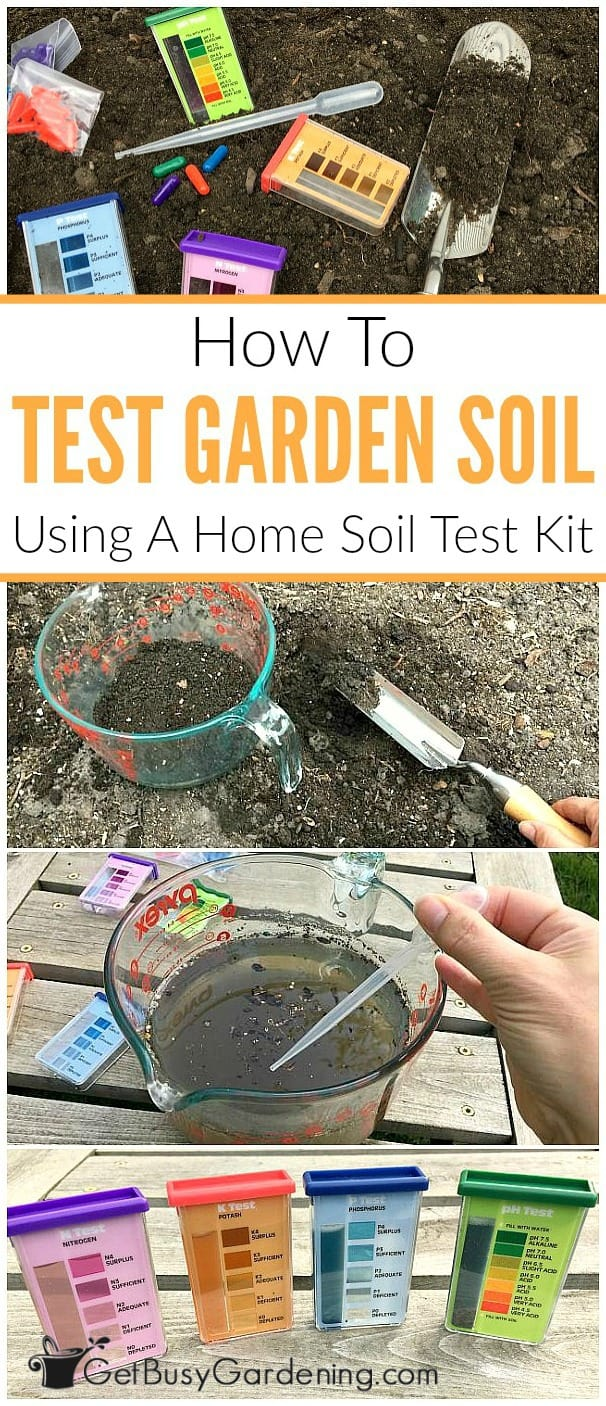 If you struggle to grow flowers or vegetables in your garden, then there's probably something wrong with the soil. It's impossible tell if the soil is healthy just by looking at it, you have to some type of soil testing. Don't worry, garden soil testing is NOT complex, time consuming or expensive. Learn how to test your soil at home using an inexpensive soil test kit.