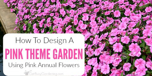 how to create a pink garden theme design using pink annual flowers, Natural flower