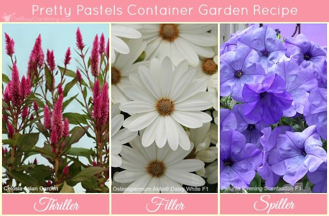Pretty pastels container flower garden recipe