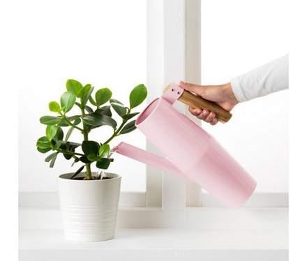 Decorative indoor watering can