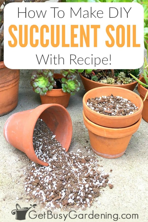 How To Make DIY Succulent Soil - With Recipe!